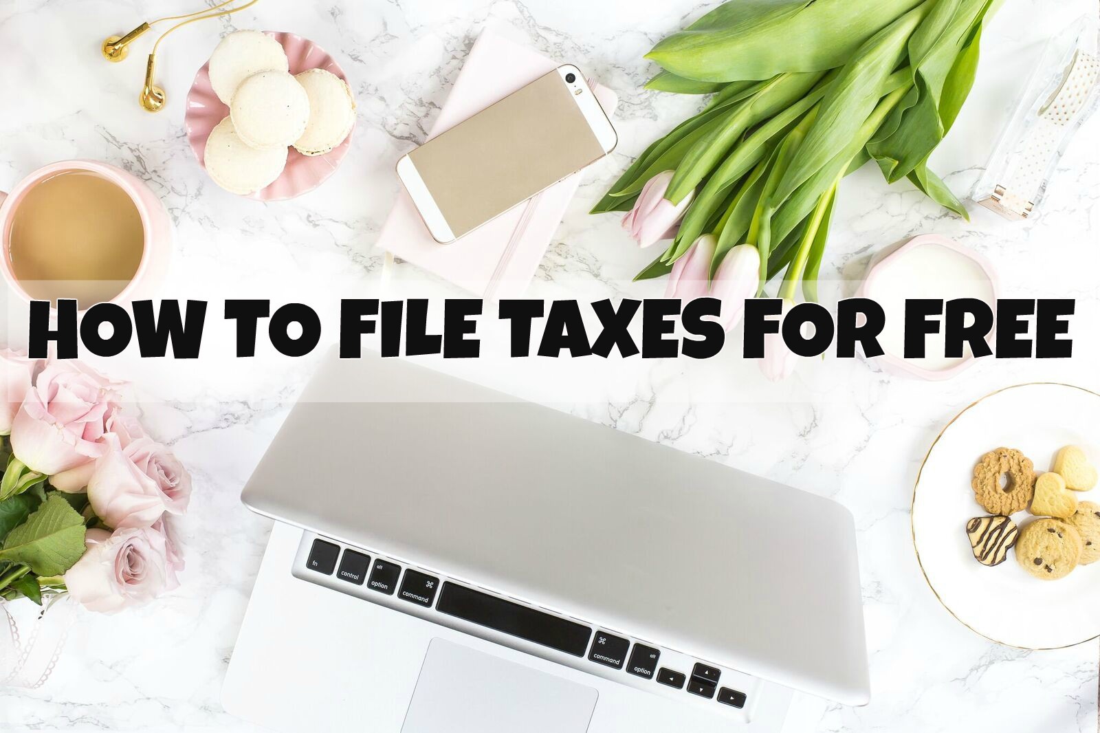 howtofiletaxesforfree